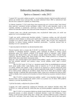 2. Správa o činnsti r2013