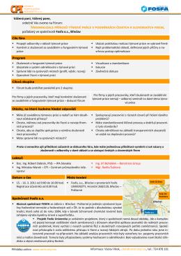 Maximalizace přínosů týmové práce v podmínkách českých a