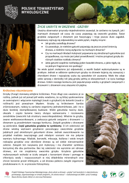 pobierz plik pdf - Polskie Towarzystwo Mykologiczne