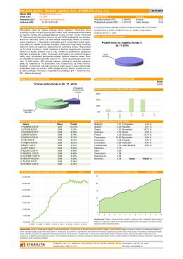 Mesačná správa - Stabilita výplatný ddf, STABILITA, dds, as