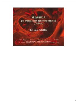 súbor PDF - poznámky k snímkam
