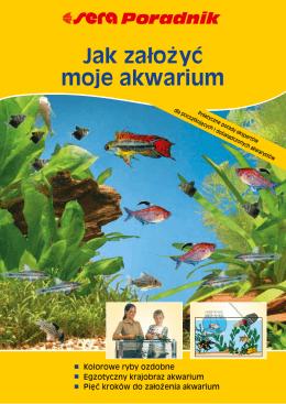Jak załoz˙ yc´ moje akwarium