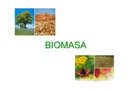 Základné údaje o biopalivách