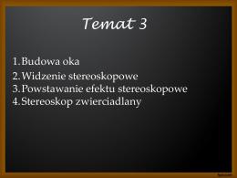 Temat 3 - Magda Pluta