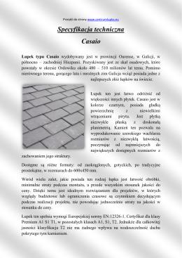 Specyfikacja techniczna Casaio