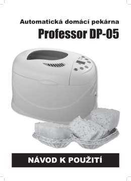 Professor DP-05 - raj