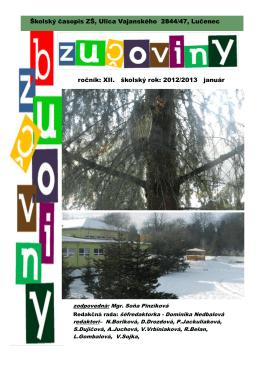 Január 2013 - Základná škola, Vajanského 2844/47, Lučenec
