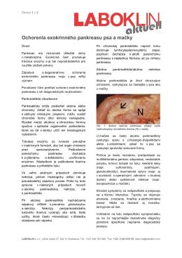 Ochorenia exokrinného pankreasu psa a mačky