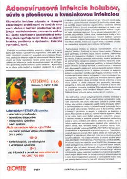 Adenovírusová infekcia holubov