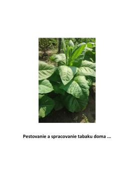 Pestovanie a spracovanie tabaku doma