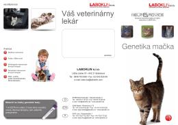 Flyer Genetik Katze SK_01-14.indd