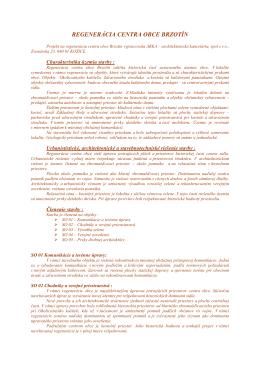 Regenerácia centra obce BRZOTÍN - text