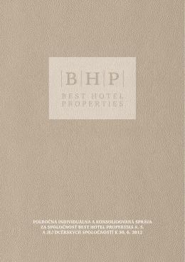 Polročná finančná správa 2012