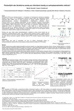 Pentoxifylín ako štruktúrna sonda pre chloridové kanály