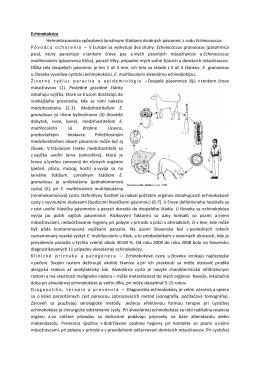 Echinokokóza Helmintozoonóza spôsobená larválnymi