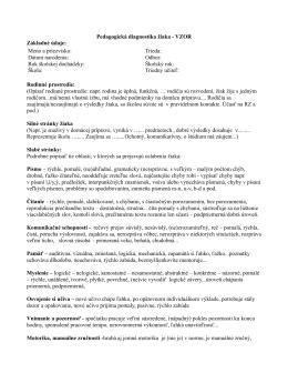 vzor (PDF)