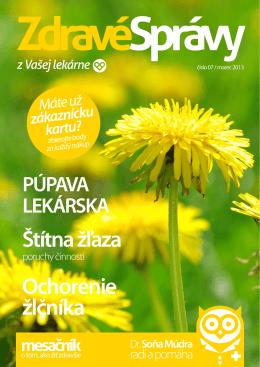 číslo 07 / Marec 2013 (pdf)