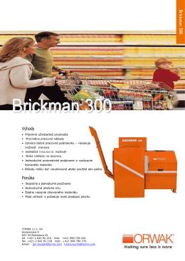 Brickman 300
