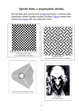 Optické klamy a dvojzmyselné obrázky