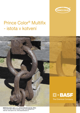Prince Color® Multifix