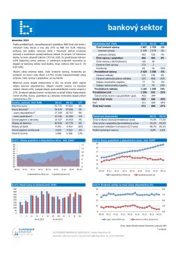 hospodárenie sektora december 2012