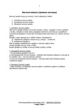 Nervová sústava (Systema nervosus)