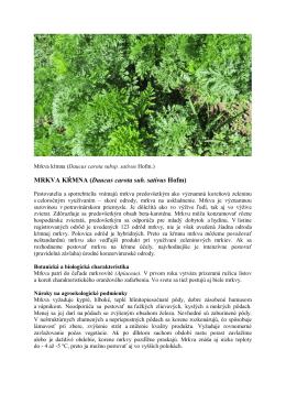 MRKVA KŔMNA (Daucus carota sub. sativus Hofm)