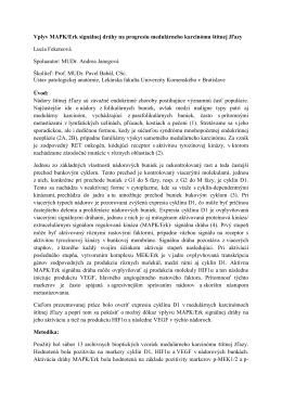 Vplyv MAPK/Erk signálnej dráhy na progresiu medulárneho
