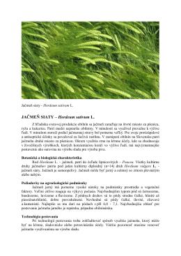 JAČMEŇ SIATY – Hordeum sativum L