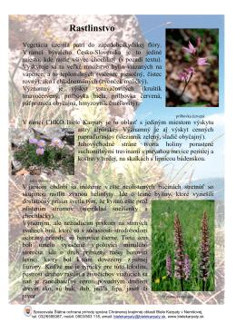 Rastlinstvo - CHKO Biele Karpaty