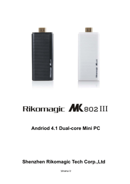 Andriod 4.1 Dual-core Mini PC Shenzhen Rikomagic