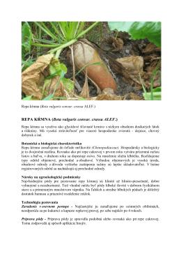 REPA KŔMNA (Beta vulgaris convar. crassa ALEF.)