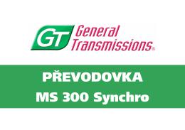 GT 300 Synchro