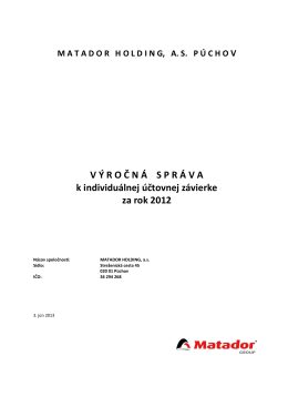 VS MATADOR HOLDING individual 2012 FINAL