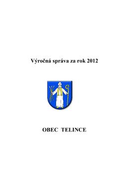 Organizačná štruktúra obce