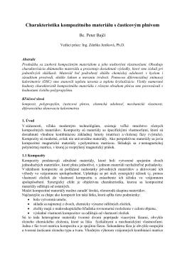 Vzor dokumentu pro příspěvek STČ