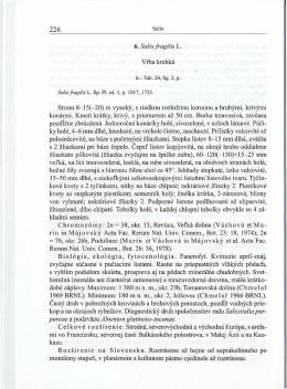6. Salix fragil is L. Vrba krehká Strom 8—15(—20) m vysoky, s