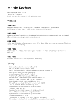Stiahnuť ako PDF - martinkochan.com