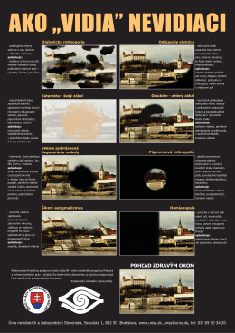 Plagát Ako vidia nevidiaci, .pdf, 723kB