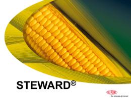 Steward - MV-servis, sro