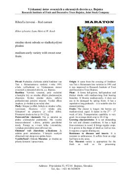 Maraton - Výskumný ústav ovocných a okrasných drevín as Bojnice