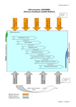 Sieť procesov v DSS