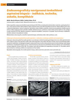 Endosonograficky navigovaná tenkoihlová aspiračná