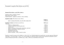 Komentár k rozpočtu 2014