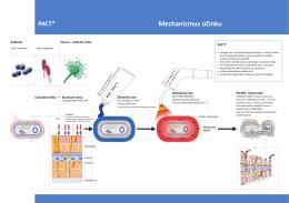 PACT® Mechanizmus účinku - fotodynamickaterapia.sk