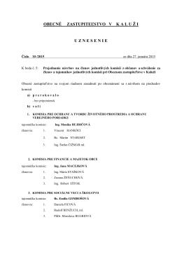 uznesenie č. 10