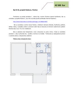 1 izb. byt B43 holopriestor