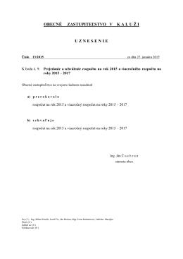 uznesenie č. 13