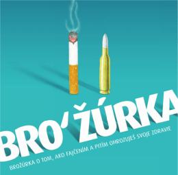 lpr brozurka slide.pdf