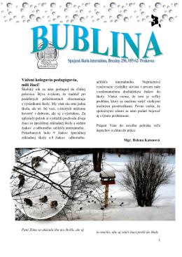 Bublina 3.pdf